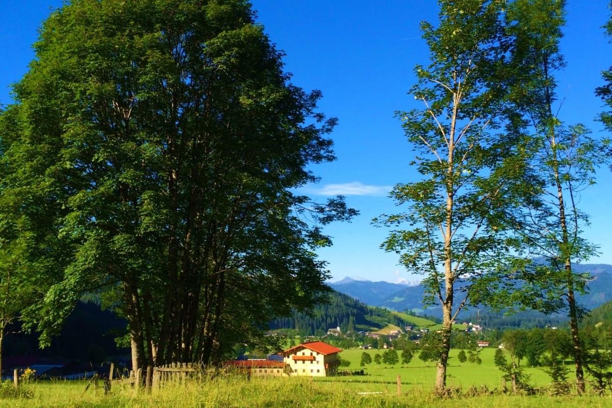 Umgebung des Oberlehengut in Werfenweng
