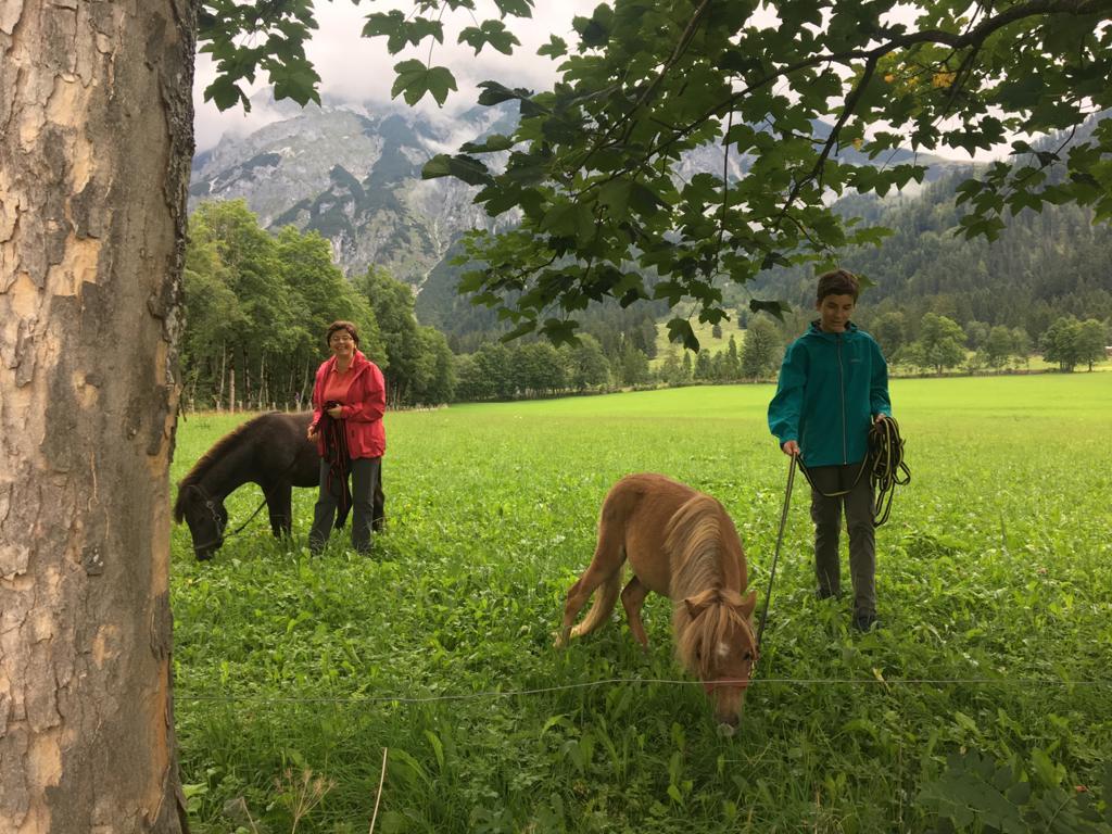 ponys mit den Gästen des Oberlehengut in Werfenweng